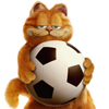garfield and football